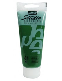ACRYLIC STUDIO 100ML GREEN EARTH