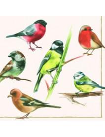 ΧΑΡΤΟΠΕΤΣΕΤΑ 33χ33 BIRDS