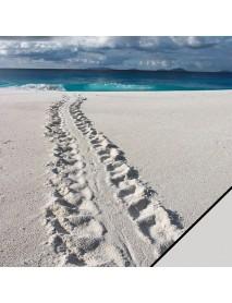 SCRAPBOOKING -ΧΑΡΤΙ: BEACH, 30, 5X30, 5CM,