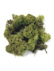 ICELANDIC MOSS, LIGHT GREEN 100gr