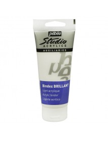 ACRYLIC STUDIO BINDEX GLOSS 100ML