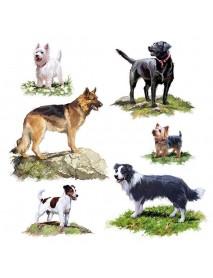 NAPKIN 33X33 DOGS
