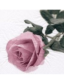 COCTAIL NAPKIN 25X25 ROSA NOBILE VINTAGE ROSE