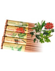 AROMA PENCILS FIG TREE 6ΤΕΜ